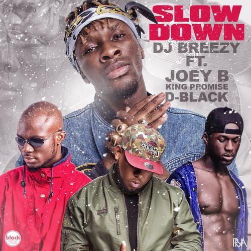 Dj Breezy – Slow Down Ft. Joey B x King Promise & D-Black (Prod By DJ Breezy) (www.Ghanasongs.com)