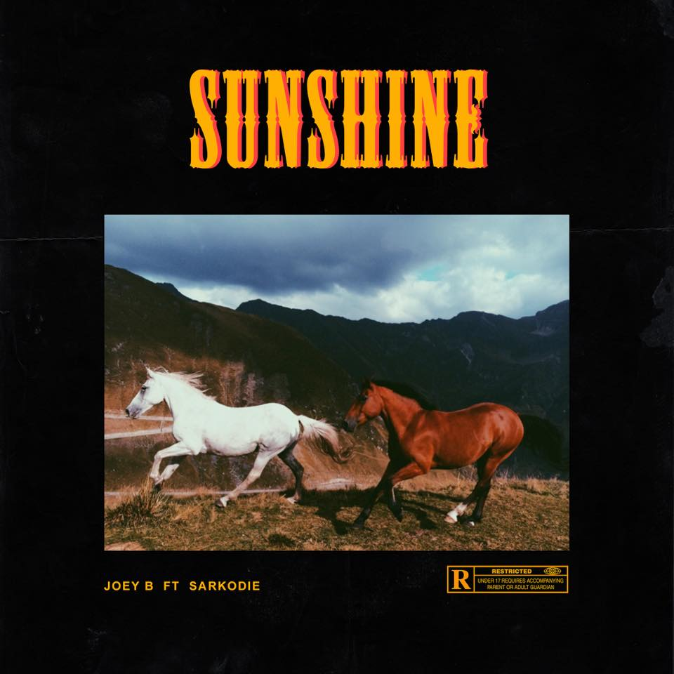 Joey B - Sunshine (Remix) ft Sarkodie