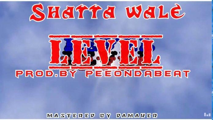Shatta Wale - Level (Prod By Pee OnDaBeatz)