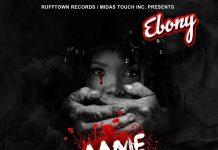 Ebony - Maame Hwe Instrumental (Prod By Kraxy beatz)