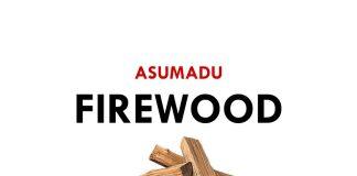 Asumadu - Firewood (Prod By Mr Herry)