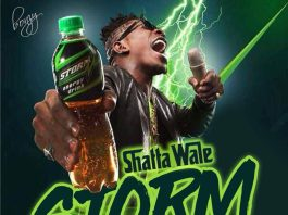 Shatta Wale - Storm Energy (Prod By WillsBeatz)