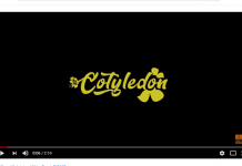 Itz Tiffany - Cotyledon Official Video