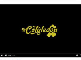 Itz Tiffany - Cotyledon Official Video