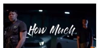 Medikal Ft Kwesi Arthur x Ahtitude - How Much (Official Video)
