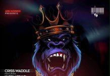 Criss Waddle ft Kwesi Arthur - King Kong