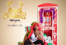 Feli Nuna ft. Fizzi Marley & VLG - Merry Christmas