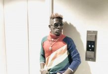 Shatta Wale – Teddy The Doll