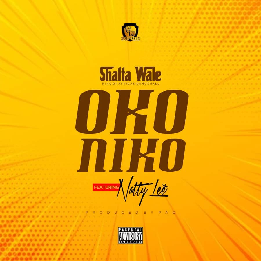 Shatta Wale Ft Natty Lee - Oko Niko (Prod By Paq)