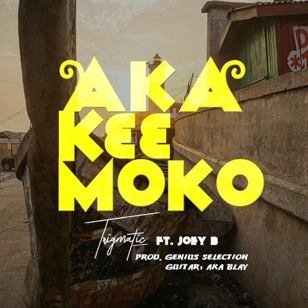 Trigmatic ft. Joey B – Aka K33 Moko