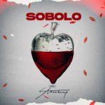 Stonebwoy - Sobolo