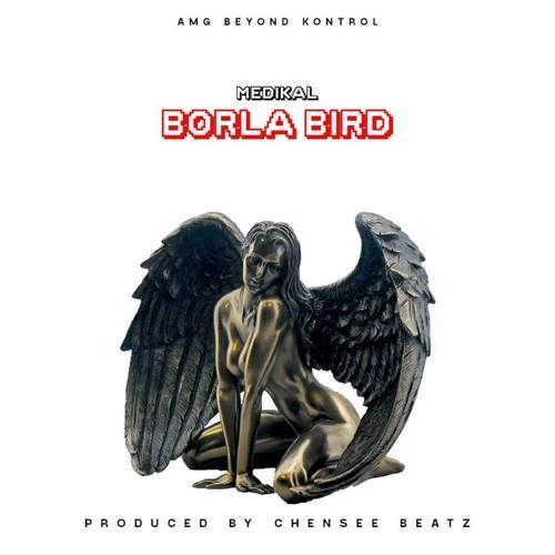 Medikal - Borla Bird (Prod By Chensee Beatz)