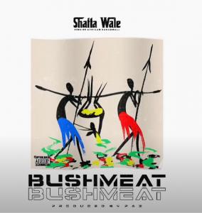 Shatta Wale - Bushmeat
